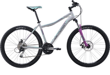 Велосипед MTB Centurion Eve 70.27 (Grey/purple/silver) (2016)